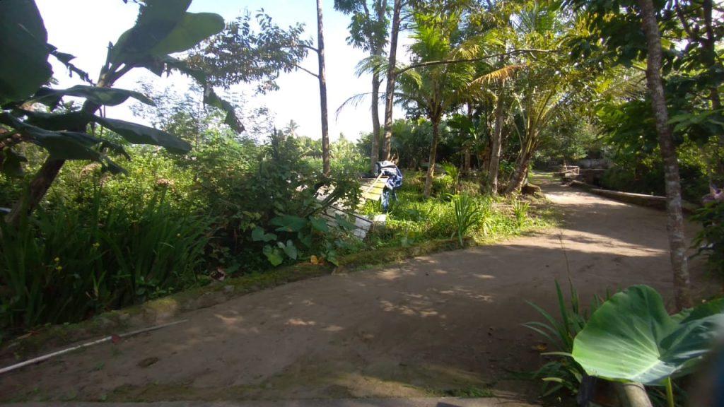Rumah Joglo Riverside Peter (4)