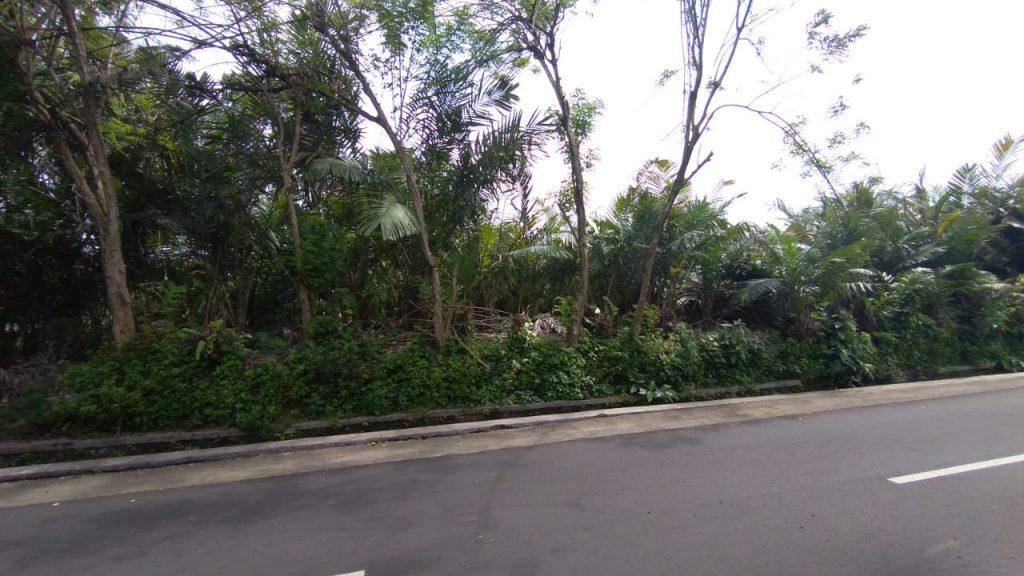 Rumah Joglo siap[ bangun Watugendong (1)