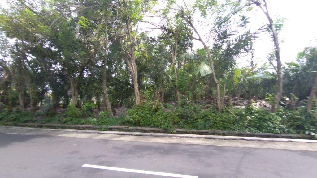 Rumah Joglo siap[ bangun Watugendong (11)