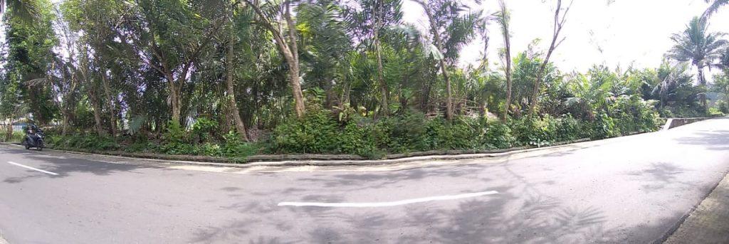 Rumah Joglo siap[ bangun Watugendong (13)