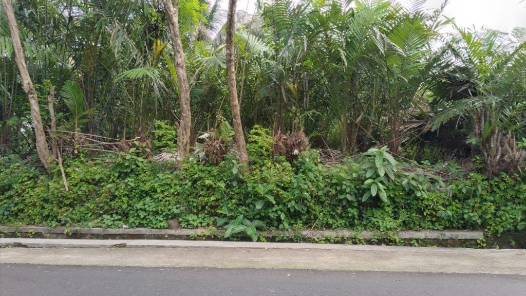 Rumah Joglo siap[ bangun Watugendong (15)