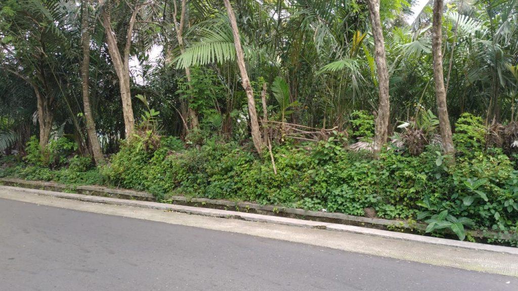 Rumah Joglo siap[ bangun Watugendong (3)
