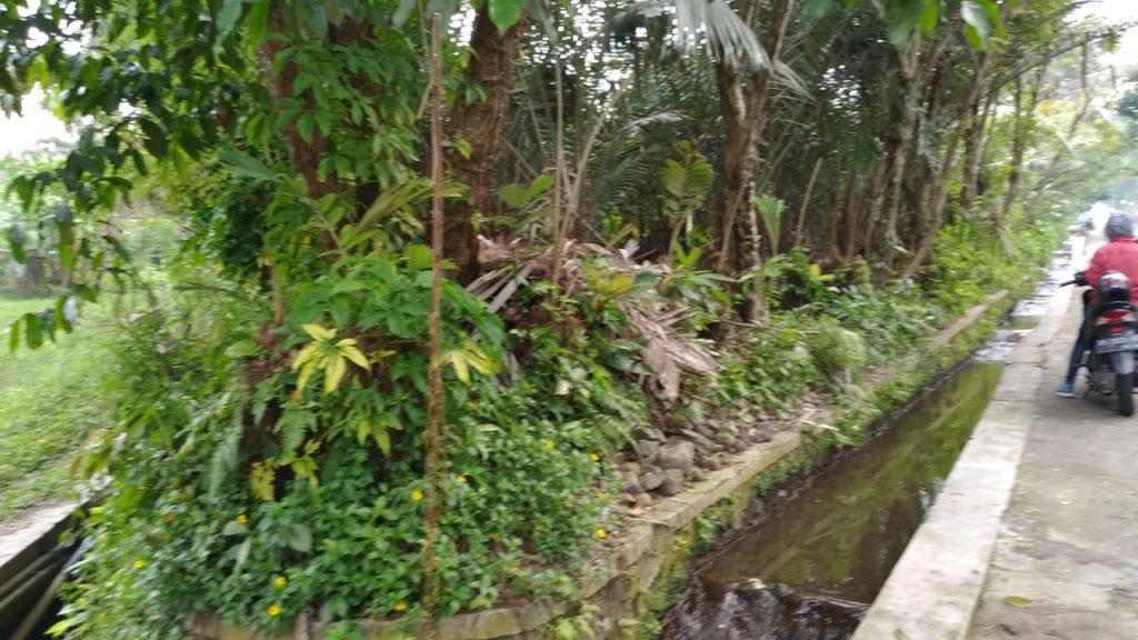 Rumah Joglo siap[ bangun Watugendong (4)