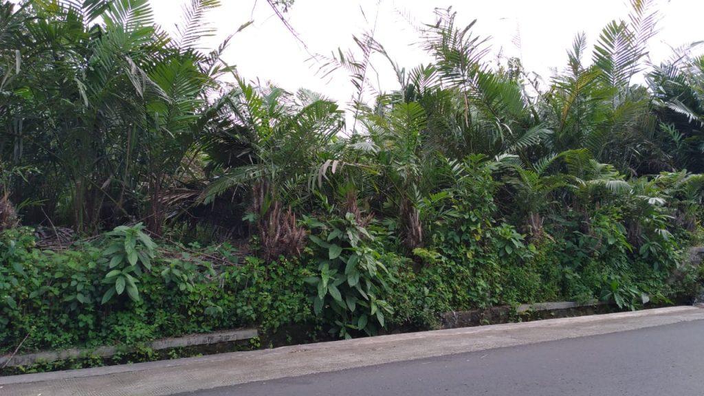 Rumah Joglo siap[ bangun Watugendong (5)