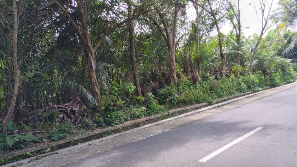 Rumah Joglo siap[ bangun Watugendong (8)